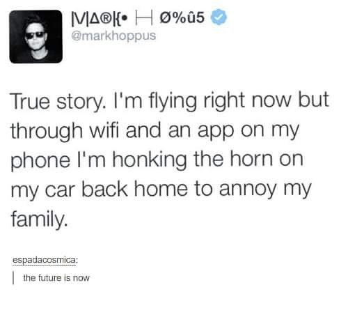 funny pictures, mark hoppus tweet true story i'm flying right now