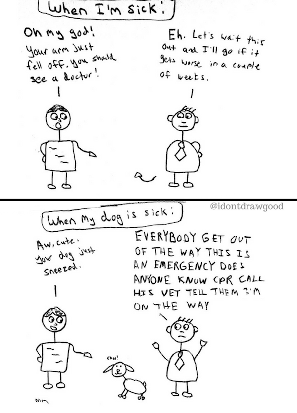 stick figure comics, funny stick figure comics, funny webcomic, funny webcomics, comic about dogs, dog comic, best funny pictures, funny pics, funny photos, funny pictures, funny vids, the best funny pictures, really funny photos, funny photos of animals, funny photos 2016, funny photos 2017, funny photos 2018, funny photos 2019, funny pics 2016, funny pics 2017, funny pics 2018, funny pics 2019, funny pictures 2016, funny pictures 2017, funny pictures 2018, funny pictures 2019, funniest pics 2016, funniest pics 2017, funniest pics 2018, funniest pics 2019, funniest pictures 2016, funniest pictures 2017, funniest pictures 2018, funniest pictures 2019, funniest photos 2016, funniest photos 2017, funniest photos 2018, funniest photos 2019, where to find funny pictures, funny pictures which made everyone laugh, where funny pictures, where to download funny pictures, where to find funny pictures with captions, where to get funny pictures for instagram, where to find funny pictures to share, where to find funny pictures to share on facebook, where to see funny pictures, funny pictures for instagram, funny pictures for facebook, funny pictures for memes, funny pictures for wallpaper, funny pictures for him, funny pictures for her, funny pictures for friends, funny pictures for snapchat, funny pictures like uberhumor, funny pictures like 9gag, funny pictures like facebook, funny pictures like, funny pictures like ifunny, funny stuff like pictures, funny pictures to text, funny pictures to photoshop, funny pictures to send, funny pictures to caption, funny pictures to post, funny pictures to make someone feel better, funny pictures to put on facebook, funny pictures to make you laugh, funny pictures to make you smile, funny pictures to brighten your day, funny pictures to brighten someone's day, funny pictures with words, funny pictures with no words, funny pictures without captions, funny pictures with jokes, funny pictures with dogs, funny pictures with cats, funny pictur