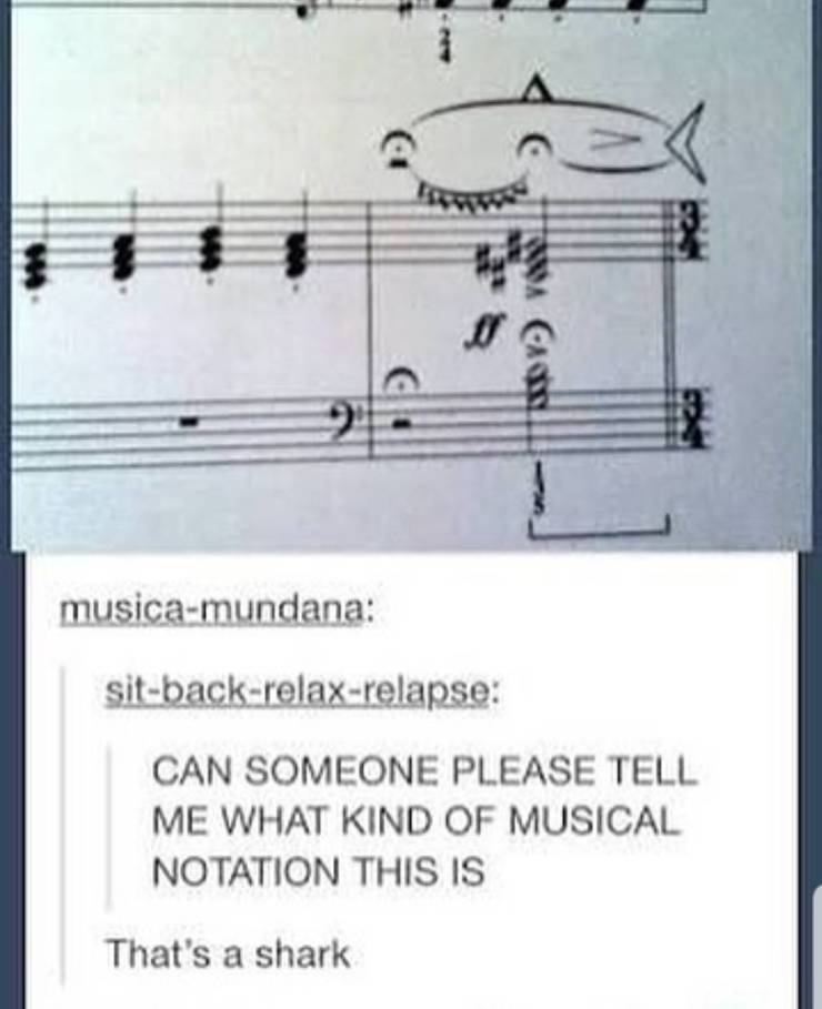 shark musical notation, shark in musical notation, musical notation that looks like a shark, musical notation funny picture, shark musical notation funny picture, funny pictures, funniest pictures, funny pics, funny images, meme pictures, hilarious funny pictures, pictures memes, picture meme, funny meme pics, best funny pictures, best funny picture, funniest picture, meme picture, crazy funny photos, funny photos, funny picture, funny photo, funny meme, funny photo dump, hilarious picture, humorous picture