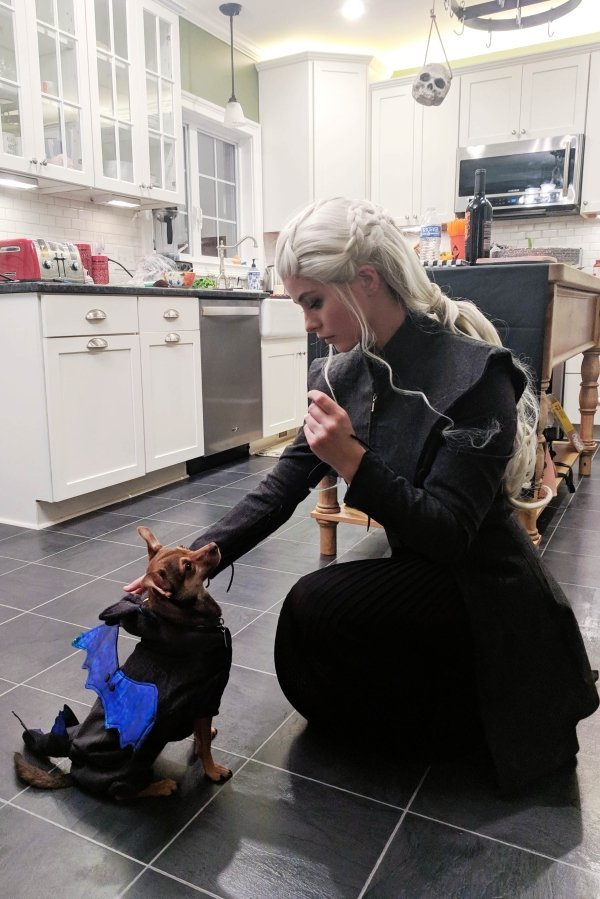 mother of dragons costume, best funny pictures, funny pics, funny photos, funny pictures, funny vids, the best funny pictures, really funny photos, funny photos of animals, funny photos 2016, funny photos 2017, funny photos 2018, funny photos 2019, funny pics 2016, funny pics 2017, funny pics 2018, funny pics 2019, funny pictures 2016, funny pictures 2017, funny pictures 2018, funny pictures 2019, funniest pics 2016, funniest pics 2017, funniest pics 2018, funniest pics 2019, funniest pictures 2016, funniest pictures 2017, funniest pictures 2018, funniest pictures 2019, funniest photos 2016, funniest photos 2017, funniest photos 2018, funniest photos 2019, where to find funny pictures, funny pictures which made everyone laugh, where funny pictures, where to download funny pictures, where to find funny pictures with captions, where to get funny pictures for instagram, where to find funny pictures to share, where to find funny pictures to share on facebook, where to see funny pictures, funny pictures for instagram, funny pictures for facebook, funny pictures for memes, funny pictures for wallpaper, funny pictures for him, funny pictures for her, funny pictures for friends, funny pictures for snapchat, funny pictures like uberhumor, funny pictures like 9gag, funny pictures like facebook, funny pictures like, funny pictures like ifunny, funny stuff like pictures, funny pictures to text, funny pictures to photoshop, funny pictures to send, funny pictures to caption, funny pictures to post, funny pictures to make someone feel better, funny pictures to put on facebook, funny pictures to make you laugh, funny pictures to make you smile, funny pictures to brighten your day, funny pictures to brighten someone's day, funny pictures with words, funny pictures with no words, funny pictures without captions, funny pictures with jokes, funny pictures with dogs, funny pictures with cats, funny pictures without words, funny pictures without text, where can I find funny photos, best photos ever, best photo ever, silly photos, silly pictures, silly pics,