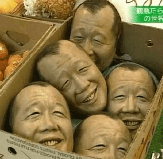 heads in box cursed image, heads in box cursed picture, heads in box cursed pic, cursed images, cursed image meme, r/cursed images, rcursed images, r cursed images, weird images