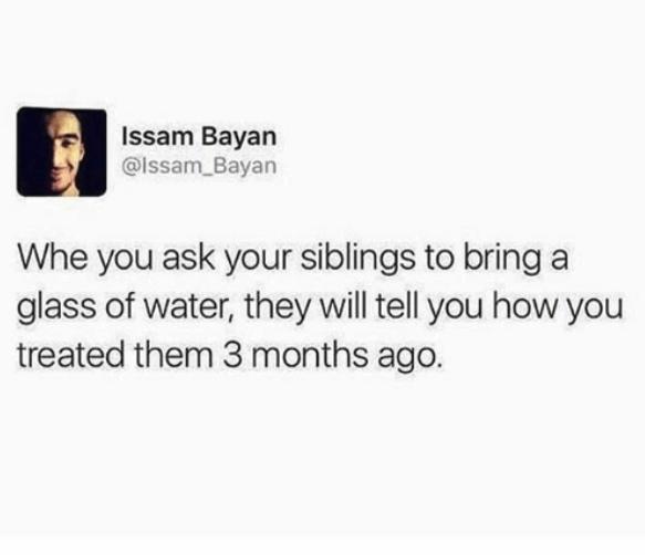 siblings, memes