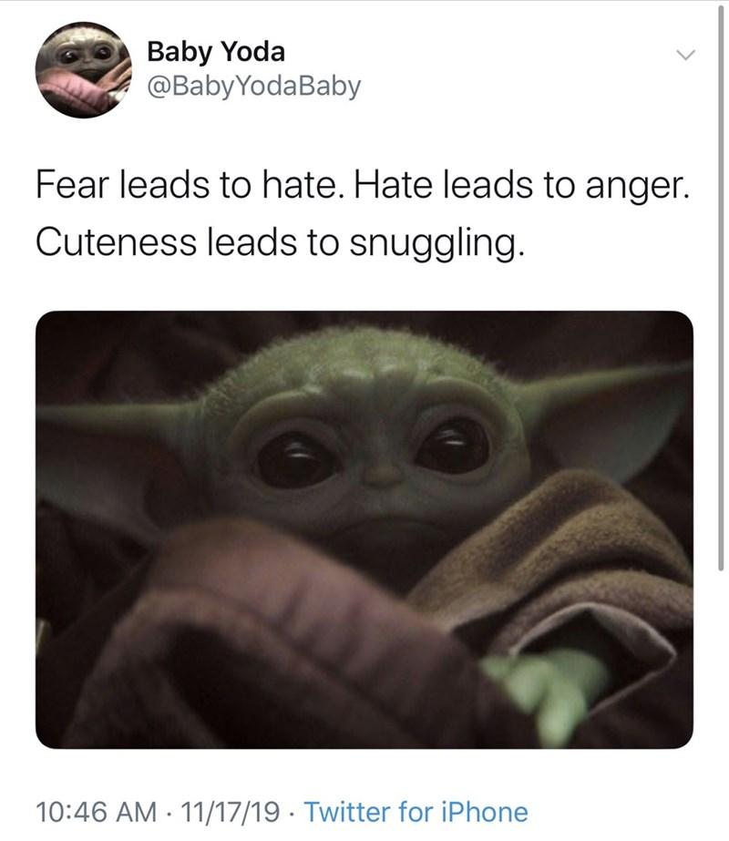 cuteness leads to snuggling baby yoda meme