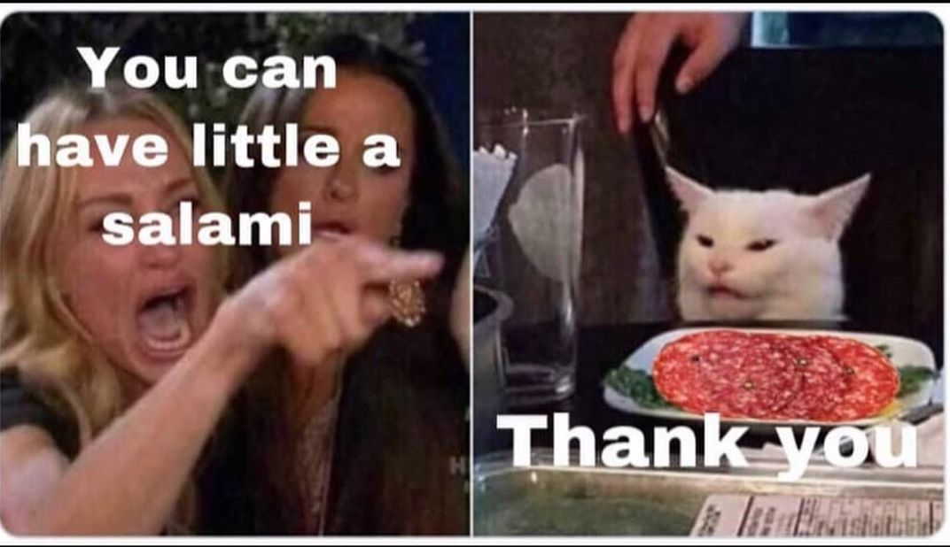 Yes Indeed, Cats Can Have A Little Salami (27 Memes)