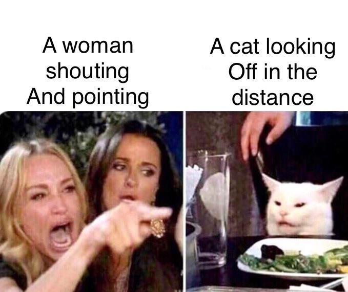 woman yelling at cat, woman yelling at cat meme, best woman yelling at cat memes, funniest woman yelling at cat memes, funny woman yelling at cat memes, women yelling at cat, women yelling at cat meme, women yelling at cat memes, best women yelling at cat memes, funniest women yelling at cat memes, funny women yelling at cat memes
