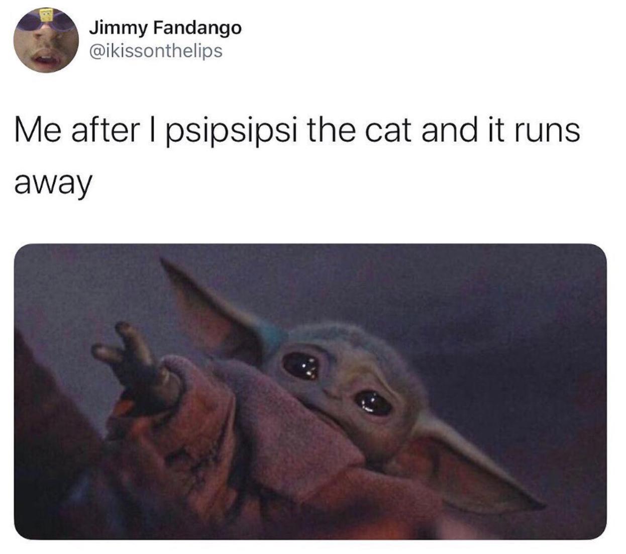 cat running baby yoda meme