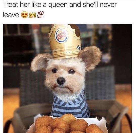 treat her like a queen love meme, treating her like a queen love meme, she'll never leave treat her like a queen love meme, cute treating her like a queen love meme