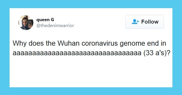 coronavirus memes, funny coronavirus memes, best coronavirus memes