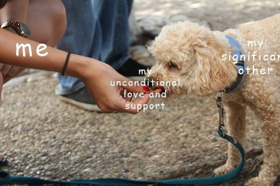 unconditional love and support love meme, cute unconditional love meme, cute my unconditional love meme, love meme, love memes, meme about love, memes about love, funny love meme, funny love memes, lover meme, lover memes, I love you meme, i love you memes, meme love, memes love, meme on love, memes on love, love and affection meme, love and affection memes, wholesome love meme, wholesome love memes, funny i love you memes, funny i love you meme, love memes for him, love meme for him, love memes for her, love meme for her, wholesome memes love, wholesome meme love, i love you memes for him, love and support meme, i love you meme for her, funny love memes for him, funny love meme for her, funny love memes for her, cute i love you memes, cute i love you meme, sweet love memes, sweet love meme, love wholesome memes, love wholesome meme