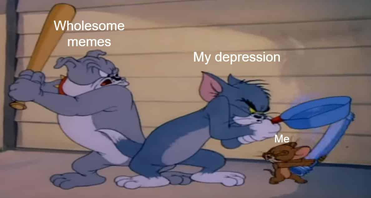 clean memes, sfw memes, wholesome memes