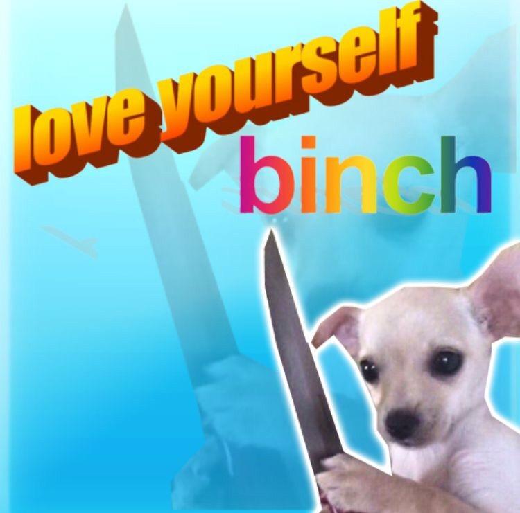 love yourself binch love meme, funny love yourself binch love meme, love yourself love meme, funny love yourself love meme