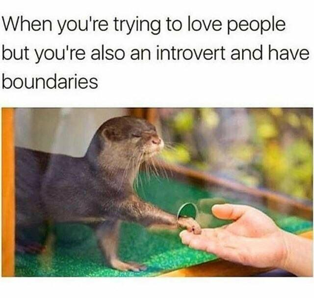 when you're trying to love someone but you're an introvert love meme, introvert love meme, funny introvert love meme, love meme, love memes, meme about love, memes about love, funny love meme, funny love memes, lover meme, lover memes, I love you meme, i love you memes, meme love, memes love, meme on love, memes on love, love and affection meme, love and affection memes, wholesome love meme, wholesome love memes, funny i love you memes, funny i love you meme, love memes for him, love meme for him, love memes for her, love meme for her, wholesome memes love, wholesome meme love, i love you memes for him, love and support meme, i love you meme for her, funny love memes for him, funny love meme for her, funny love memes for her, cute i love you memes, cute i love you meme, sweet love memes, sweet love meme, love wholesome memes, love wholesome meme