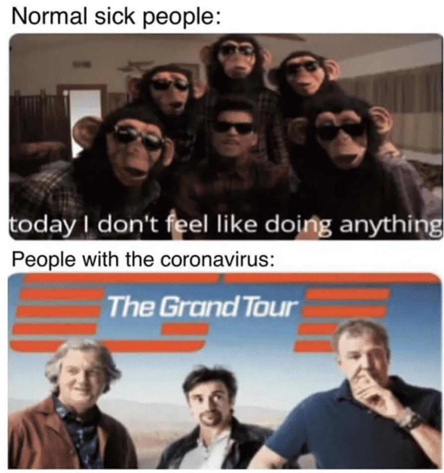 32 Memes Roasting Millennials Traveling During Coronavirus