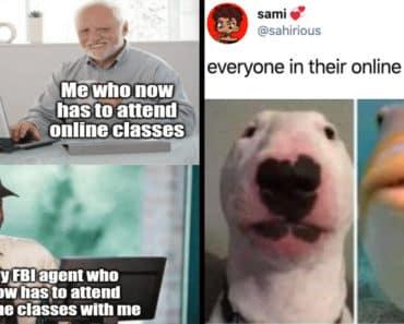 online classes memes, online class memes, zoom memes