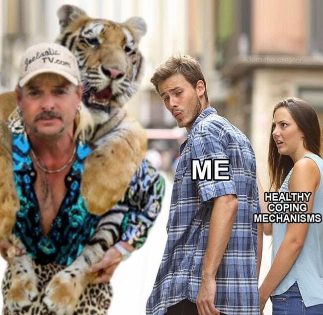 tiger king memes, joe exotic memes, netflic tiger king memes, funny tiger king memes, best tiger king memes, memes about tiger king, funny tweets tiger king