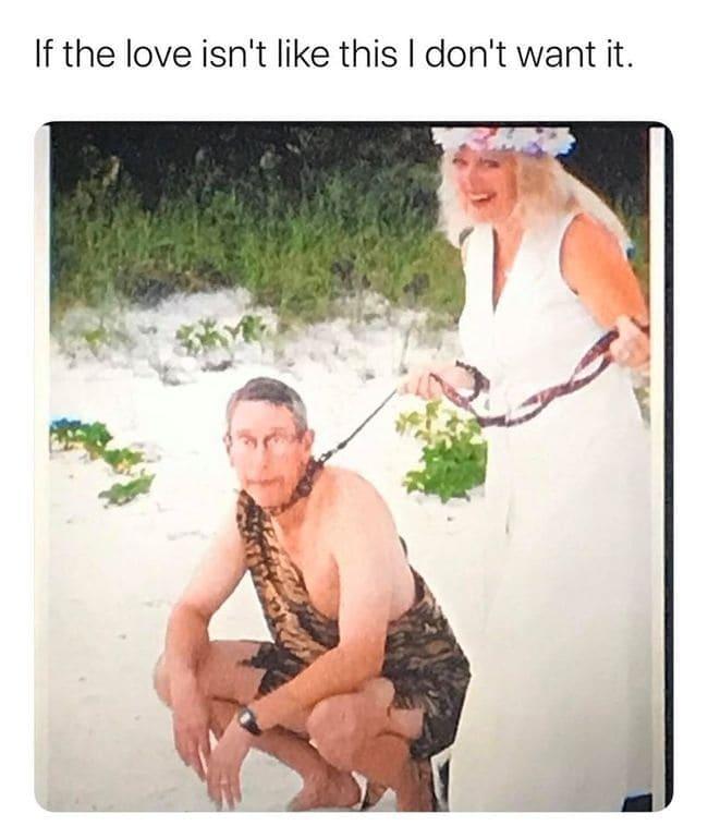 tiger king memes, joe exotic memes, netflic tiger king memes, funny tiger king memes, best tiger king memes, memes about tiger king, funny tweets tiger king