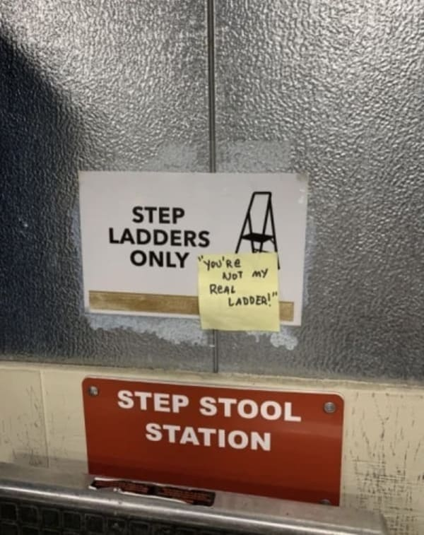 step ladders only you're not my real ladder funny picture