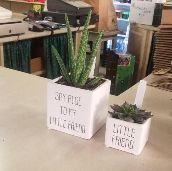 say aloe to my little friend funny picture