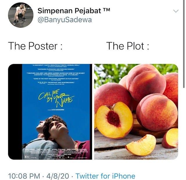 the poster the plot, the poster the plot meme, the poster the plot memes, the poster vs. the plot, the poster vs. the plot meme, poster plot, poster plot meme, poster vs. plot, poster vs. plot meme, poster plot memes, poster vs. plot memes