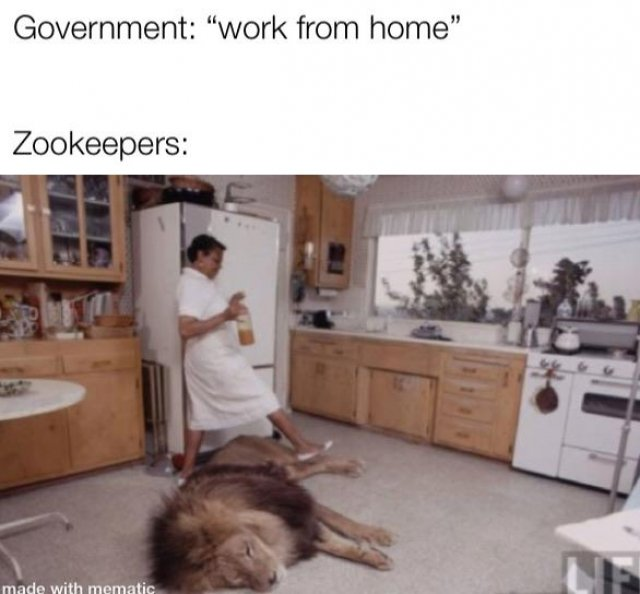 work from home memes, work from home memes