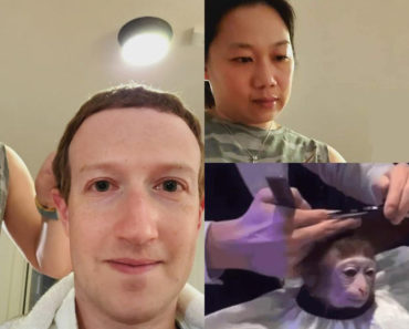 mark zuckerberg haircut memes, mark zuckerberg haircut, mark zuckerberg home haircut