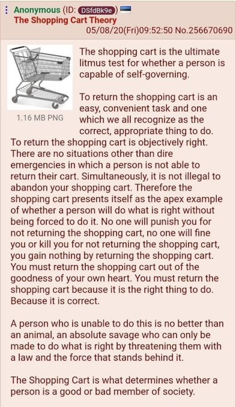 shopping cart theory