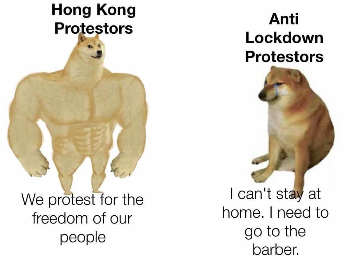 swole doge, swole doge meme, swole doge and cheems, swole doge and cheems meme, swole doge memes, cheems memes, cheems meme, swole doge and cheems memes