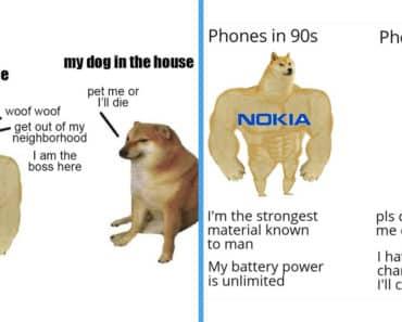 swole doge, swole doge and cheems, swole doge meme, swole doge and cheems meme