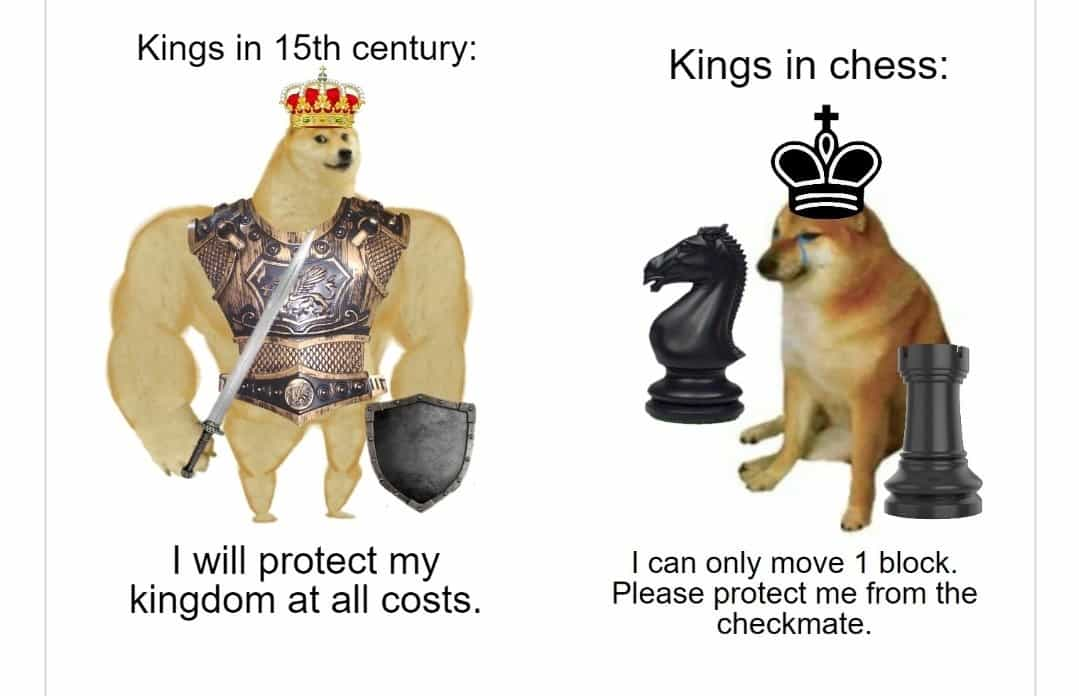 35 Of The Best Swole Doge And Cheems Memes We Had Time To Find