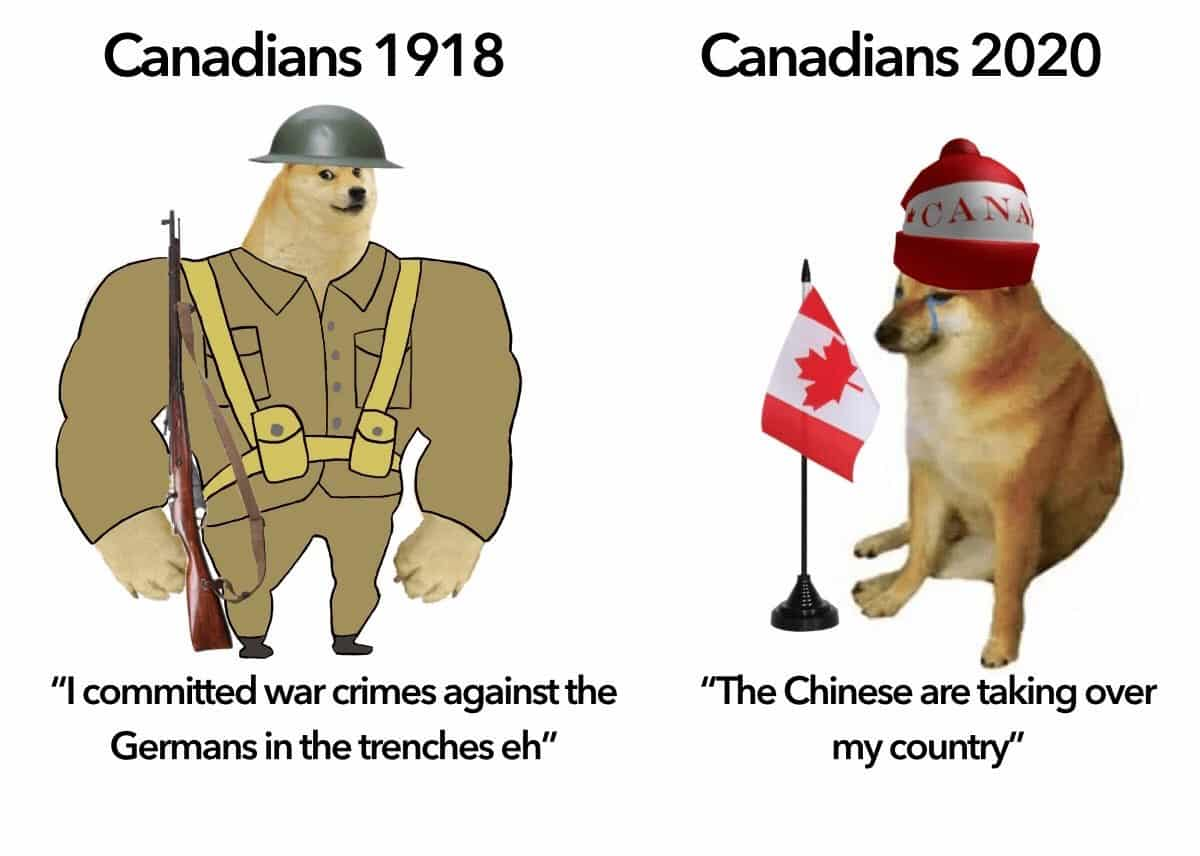 swole doge meme, swole doge and cheems, swole doge and cheems meme, swole doge memes, cheems memes, cheems meme, swole doge and cheems memes