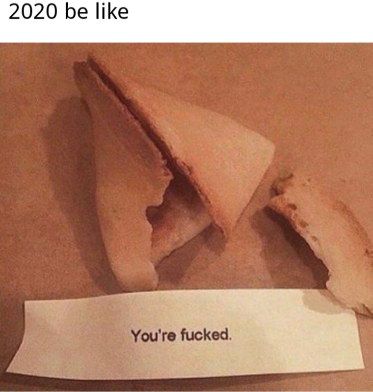 fortune cookie 2020, fortune cookie for 2020, 2020 meme, 2020 memes, funny 2020 meme, funny 2020 memes, meme about 2020, memes about 2020, hilarious 2020 meme, hilarious 2020 memes, funny memes 2020, funny meme 2020, funny meme about 2020, funny memes about 2020, 2020 funny meme, 2020 funny memes, meme funny 2020, memes funny 2020, 2020 funny meme, 2020 funny memes, hilarious memes about 2020, hilarious meme about 2020