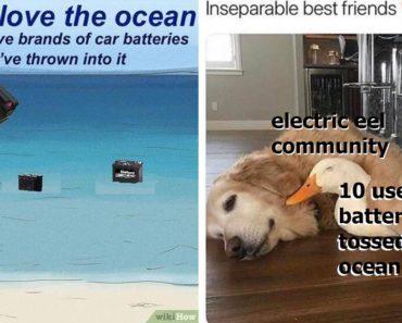 car battery meme, car battery memes, throwing car battery into ocean meme, throwing car battery into ocean memes, funny car battery memes, best car battery memes