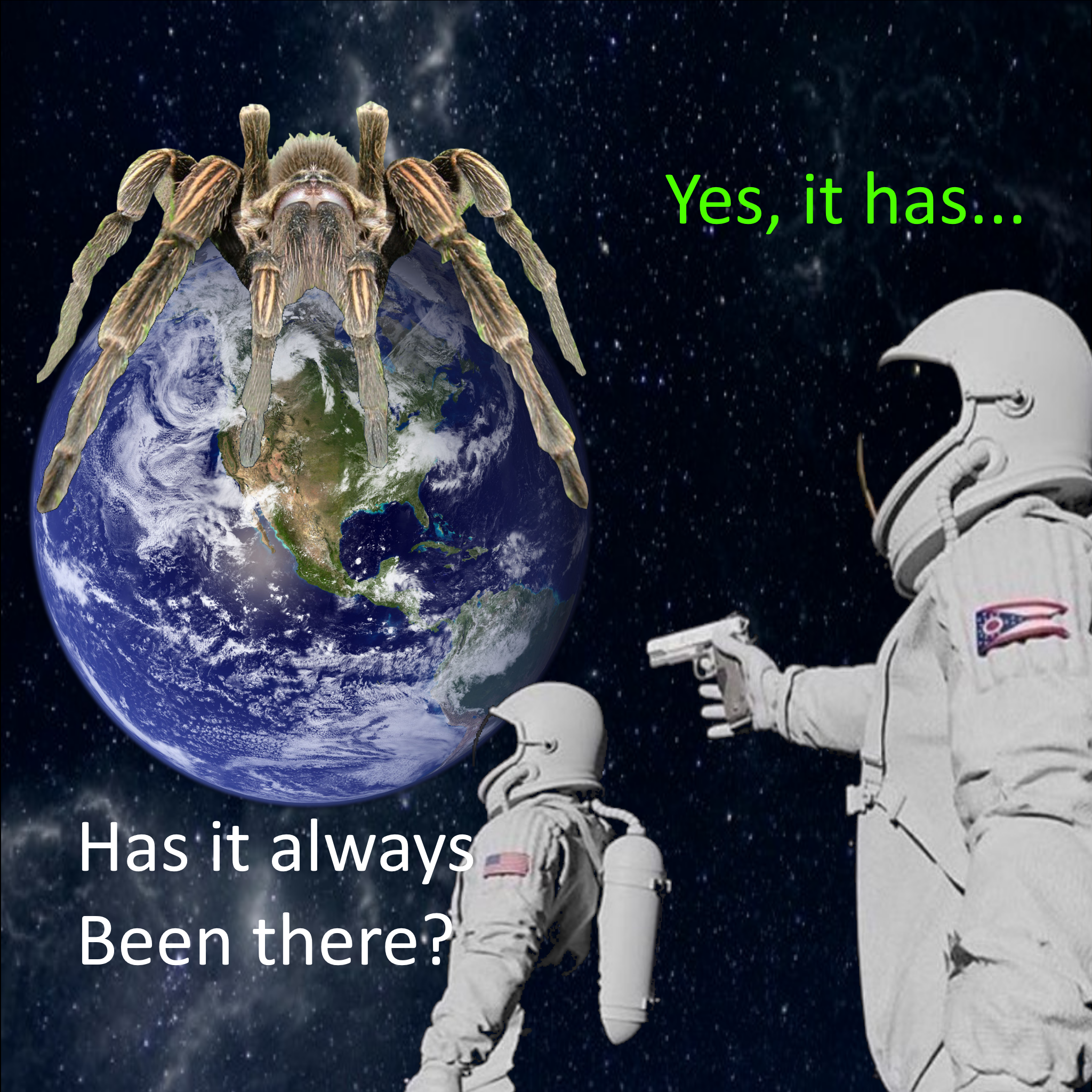 its all wolf spider meme, its all wolf spider astronaut meme