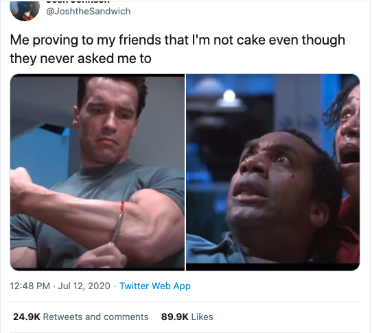these are all cakes meme, everything is cake, everything is cake meme