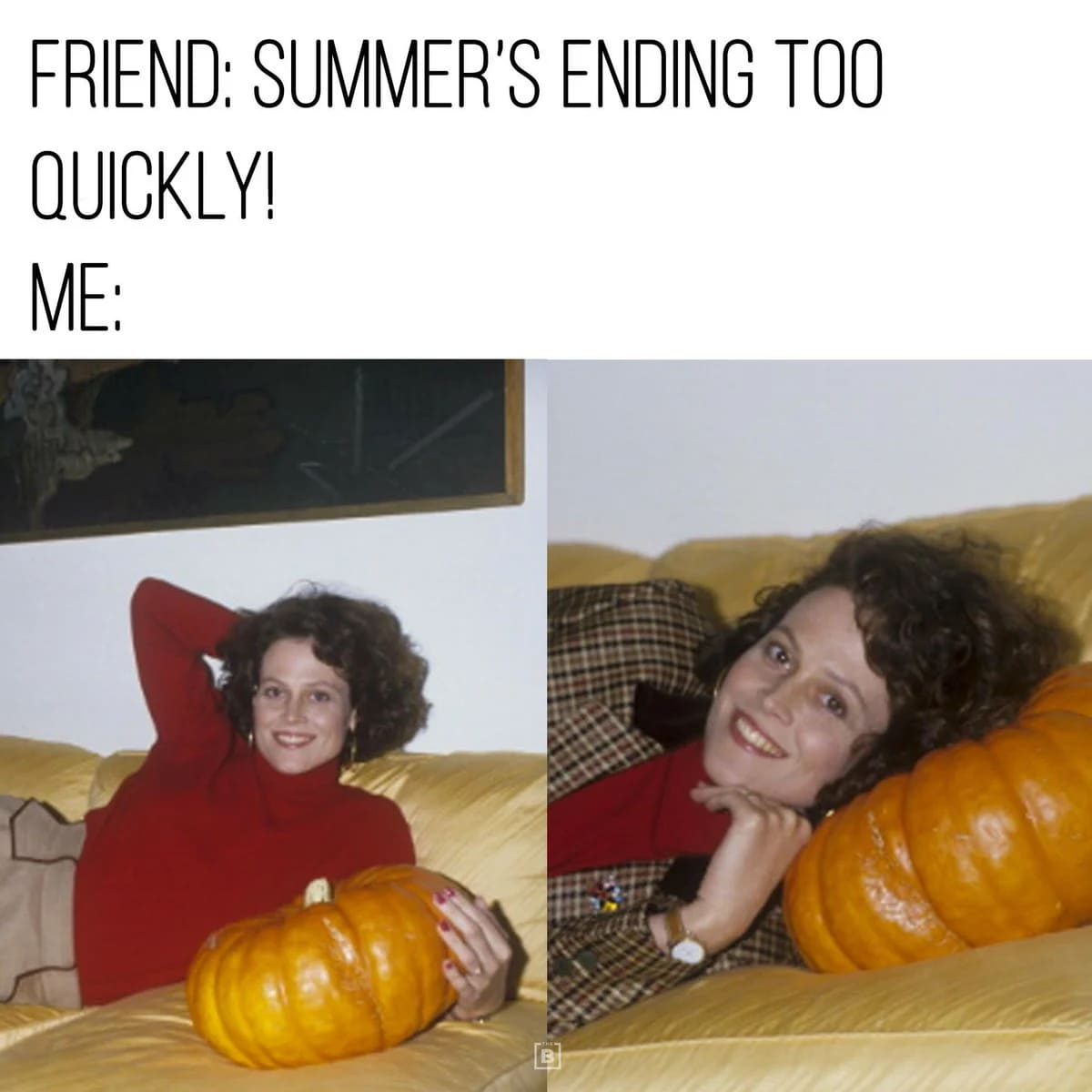 ending too quickly autumn fall meme, funny ending too quickly autumn fall meme, fall meme, fall memes, funny fall meme, funny fall memes, autumn meme, autumn memes, funny autumn meme, funny autumn memes, funny memes about fall, funny meme about fall, funny meme about autumn, funny memes about autumn, meme about fall, memes about fall, memes about autumn, meme about autumn, autumn joke, autumn jokes, joke about autumn, jokes about autumn, fall season meme, autumn season meme, fall season memes, autumn season memes