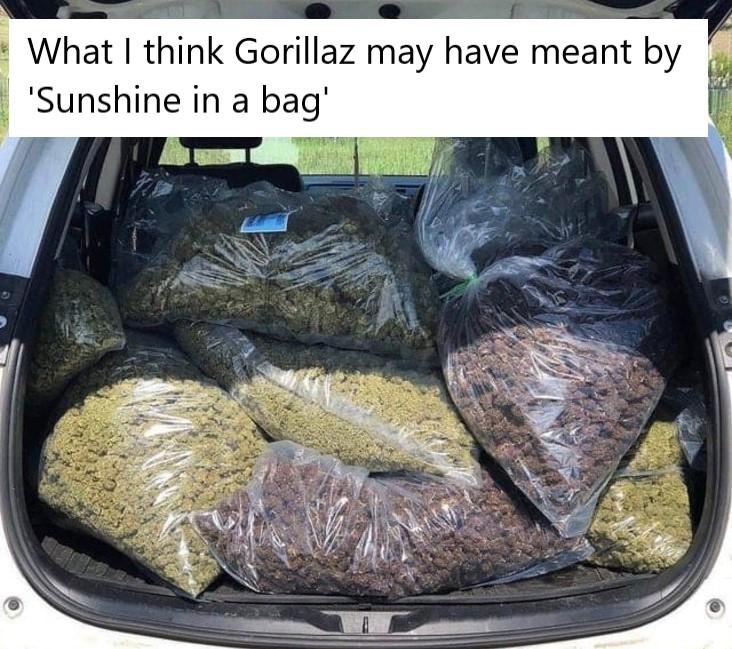 sunshine in a bad stoner meme, funny sunshine in a bag weed meme, gorillaz sunshine in a bag weed meme, gorillaz sunshine in a bag stoner meme