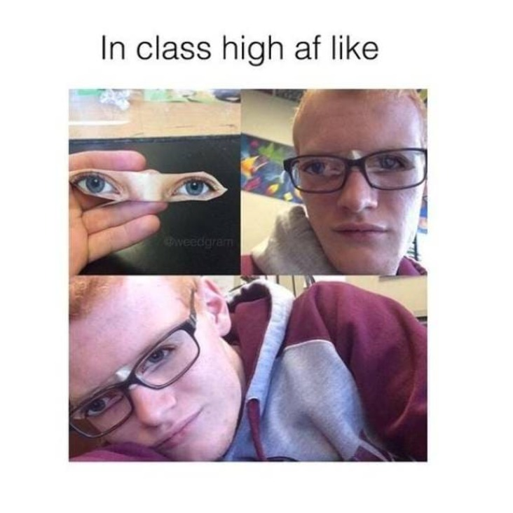 in class high stoner meme, when you are in class high stoner meme, when you are in class weed meme, when you are in class high weed meme