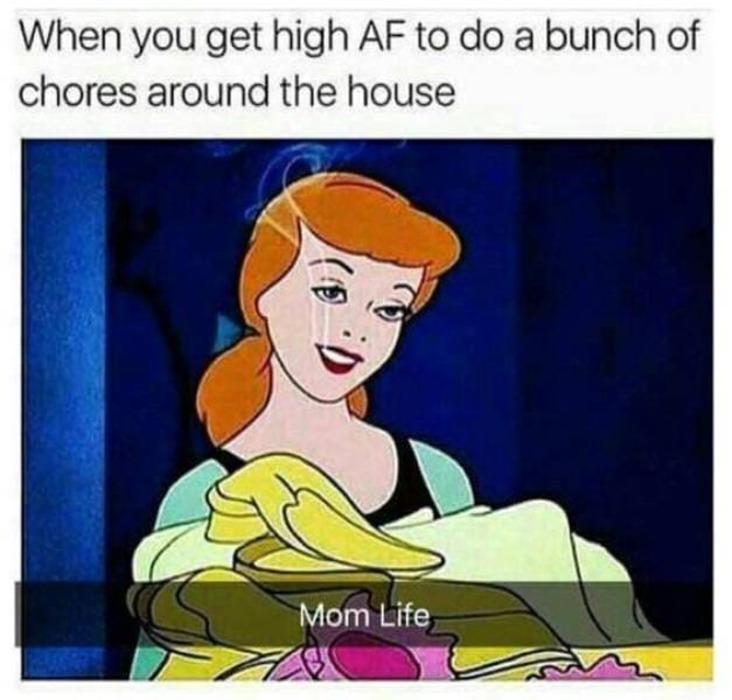 house chores stoner meme, house chores weed meme, doing house chores stoner meme, doing house chores high stoner meme