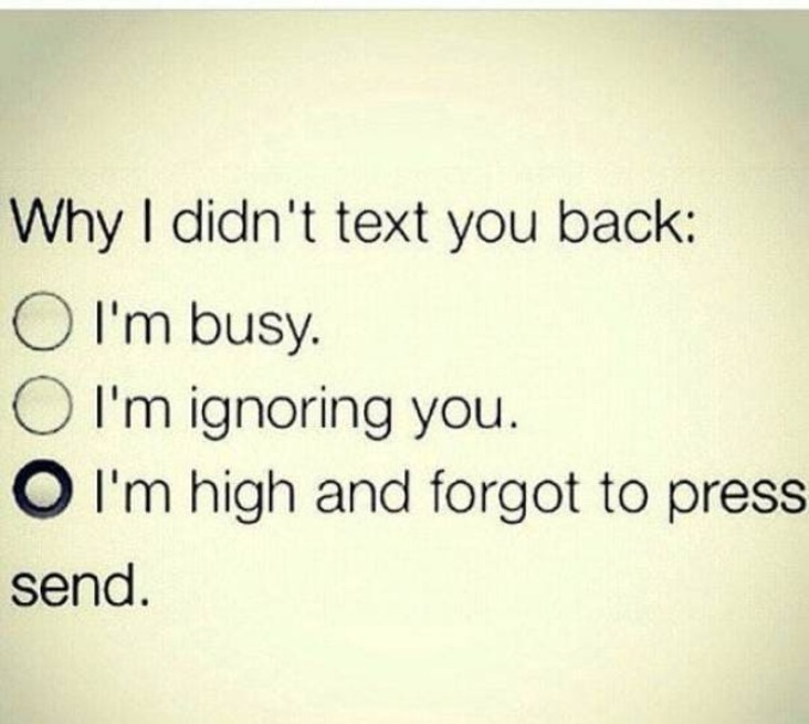 i forgot to press send stoner meme, i forgot to press send weed meme, funny i was high and forgot to press send stoner meme