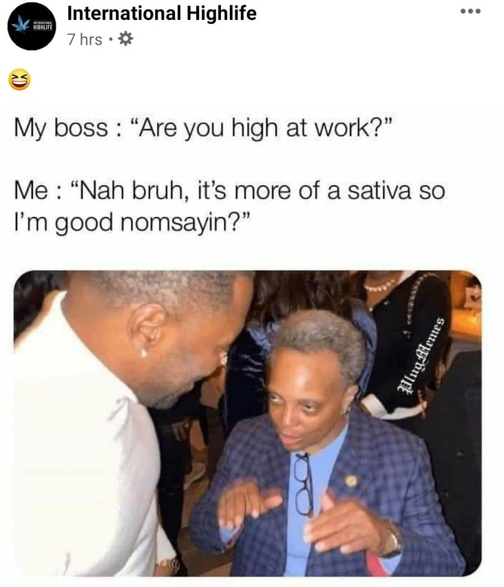 are you high at work stoner meme, being high at work stoner meme, funny are you high at work stoner meme