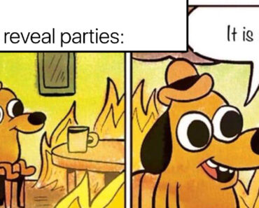 gender reveal party meme