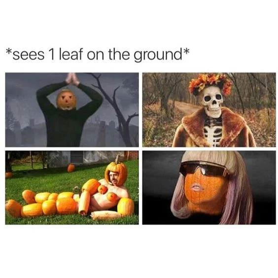 sees 1 leaf on the ground autumn fall meme, funny sees 1 leaf autumn fall meme, after i see one leaf funny autumn fall meme