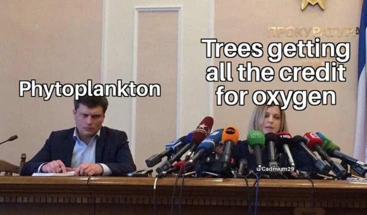 trees hogging credit science meme, funny trees hogging credit science meme, science meme, science memes, funny science meme, funny science memes, meme science, memes science, meme about science, memes about science, science related meme, science related memes, nerdy science meme, nerdy science memes, funny nerdy meme, funny nerdy memes, nerdy meme, nerdy memes, science joke, sciences jokes, joke about science, jokes about science, science joke meme, science joke memes, clever science meme, clever science memes, smart science meme, smart science memes