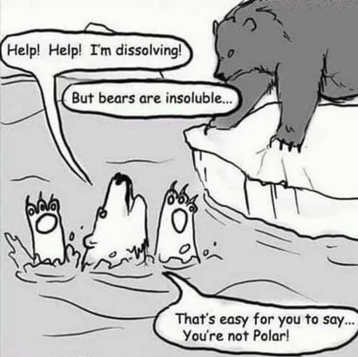 polar bear science meme, funny polar bear science meme, polar bear swimming science meme, insoluble science meme