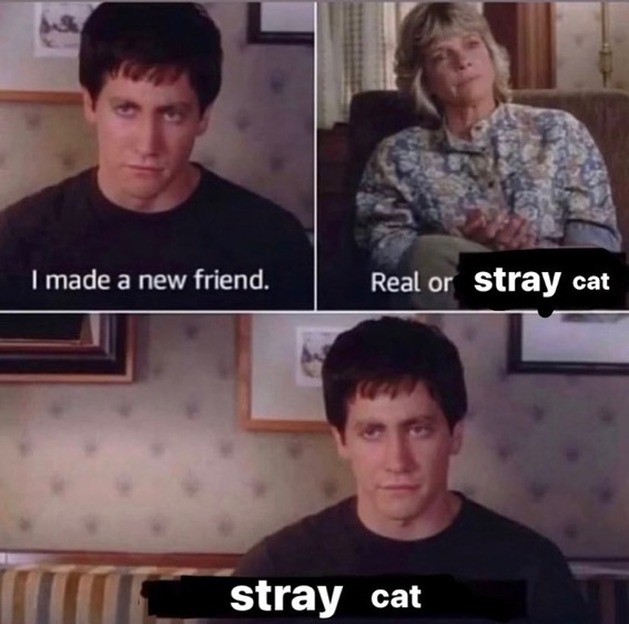 i made a new friend meme, donnie darko meme