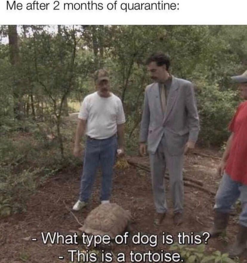 25 Funny Borat Memes That Are Also *Borat Voice* Very Niiiice 22