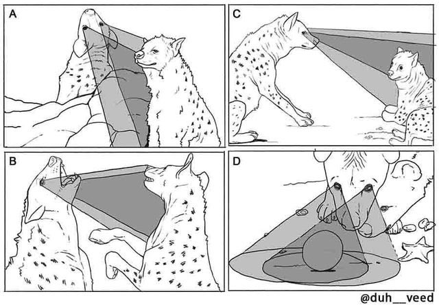 Scientists Can't Explain Why Out-Of-Context Science Textbook Diagrams Are So Funny (26 Pics) 26