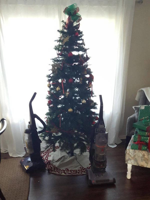 dog proof tree, cat proof tree, Christmas tree protect from pets