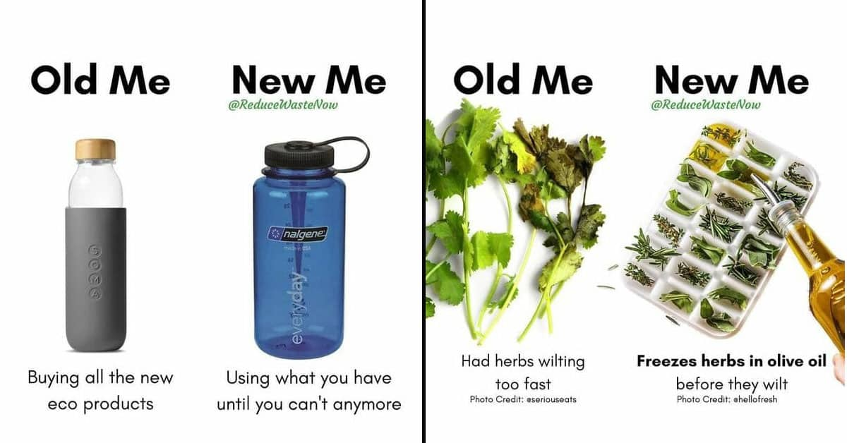 """""""Old Me Vs. New Me"""" Memes Will Help You Implement Waste Reduction (50 Pics)"""