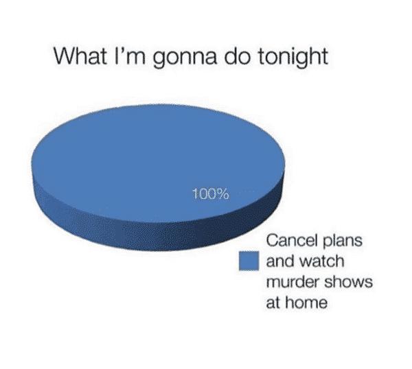 what i'm gonna do tonight introvert meme